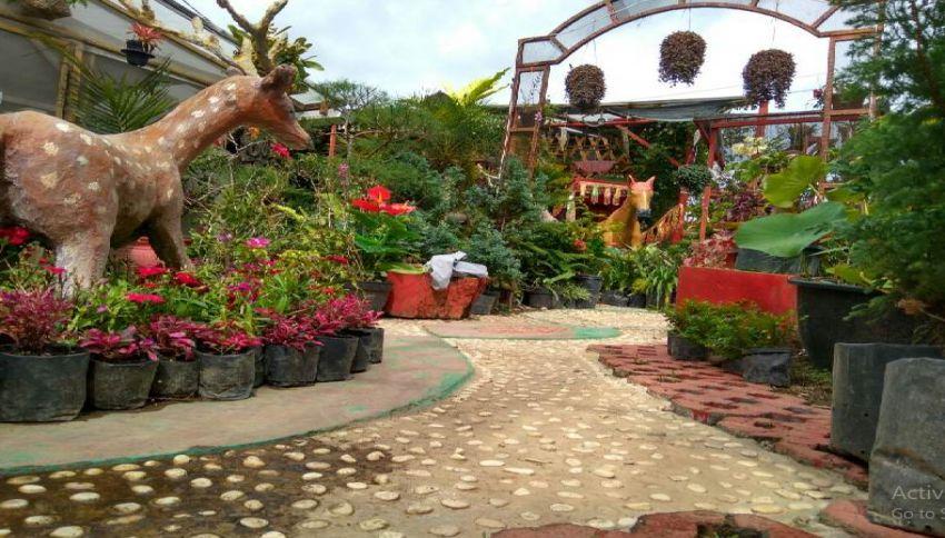wisata Green House Lezatta Bukittinggi